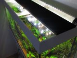Aquarium Led Beleuchtung Selber Bauen Schullebernds Technikwelt pertaining to sizing 1024 X 1365