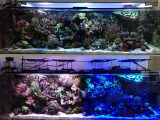 Test Led Leuchten Maxspect R420r pertaining to sizing 1280 X 1005